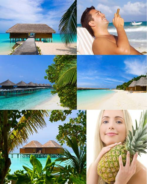 Tropical Holiday - Stock Images