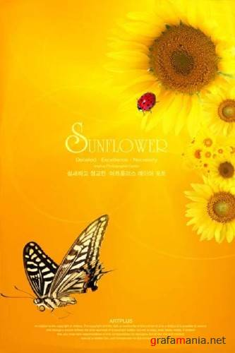 "PSD Template ""Sunflower"""