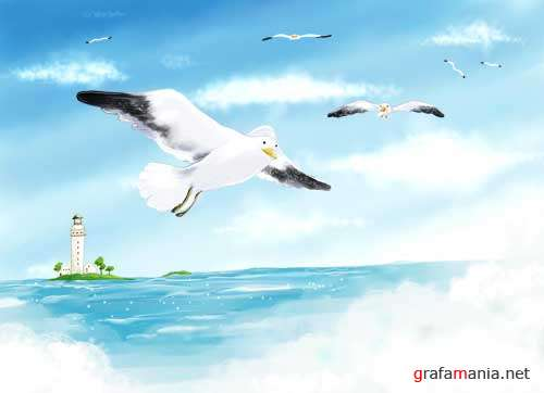 Gulls and the Sea