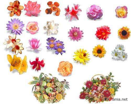 Flowers are Bouquets