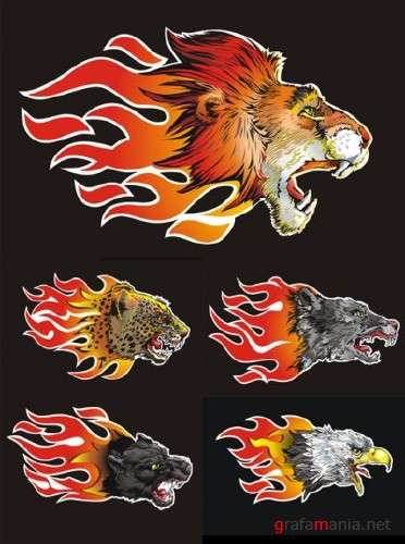 Wild Animal Flames