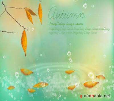 PSD Template - Here is and autumn