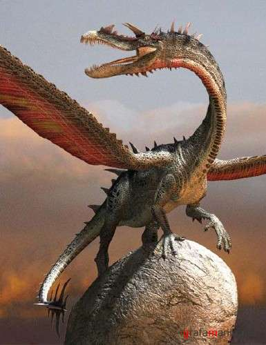 Long Snouted Dragon