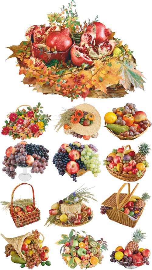 Fruit Arrangement | Фрукты