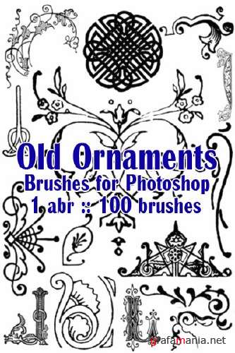 100 Old Ornaments Brushes