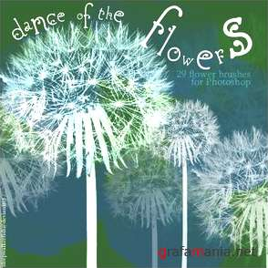 Dance of the Flowers Brushes