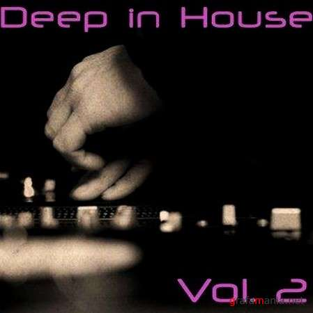 Deep in House Vol. 2 (2009)
