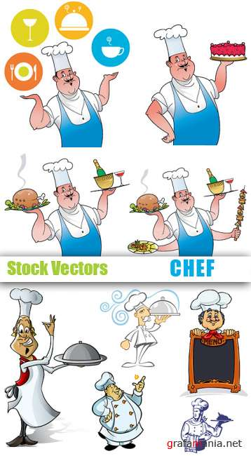 Stock Vectors - Chef