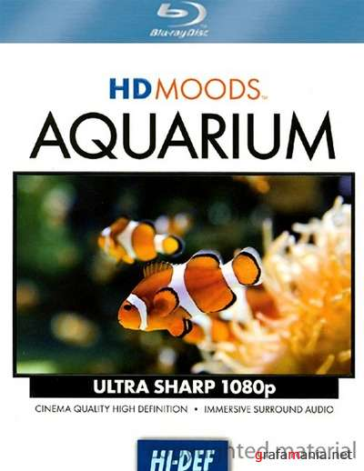 HD Moods: �������� / HD Moods: Aquarium (2008) BDRip