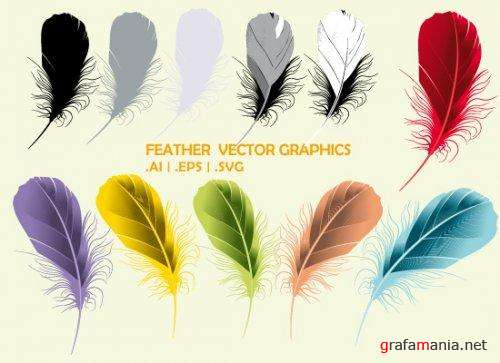 Feather Vector Graphics