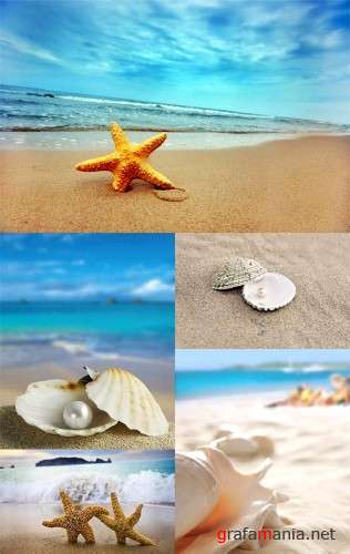 Shells, Pearls and Sea Stars