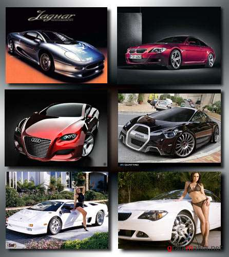 BMW_Lamborghini_Elite Cars Wallpapers