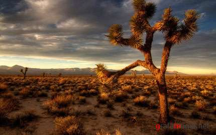 Wallpapers HD Landscapes / Обои природа