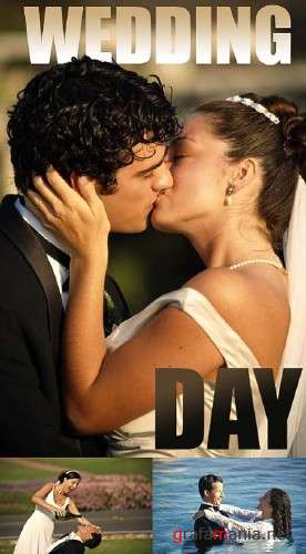 Wedding Day - HQ Stock Photos (Brandxpictures X181)
