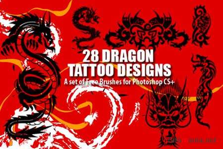 Dragon Tattoo Designs Photoshop Brushes