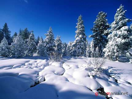 Amazing Snow and Arctic Landscapes Wallpapers / Зимние обои