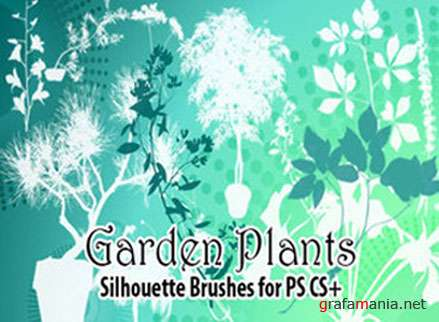 Garden Plants Brushes