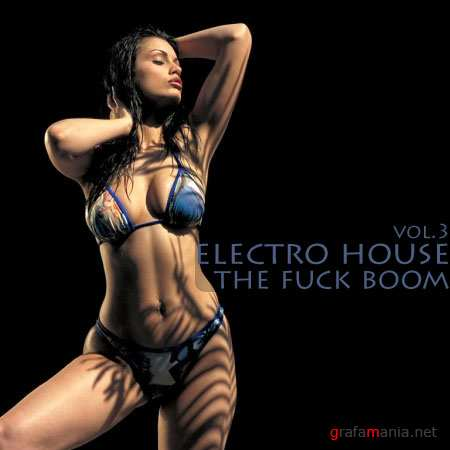 Electro-House The Fuck boom vol.3 (2009)