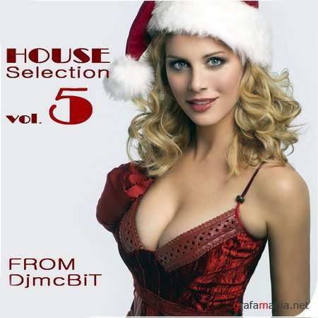 House Selection from DjmcBiT vol.5