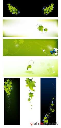 Leafy banners vector