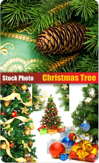 Stock Photo - Christmas Tree