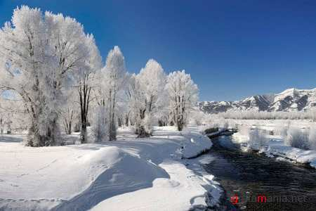 Wallpapers - Delightful winter landscapes
