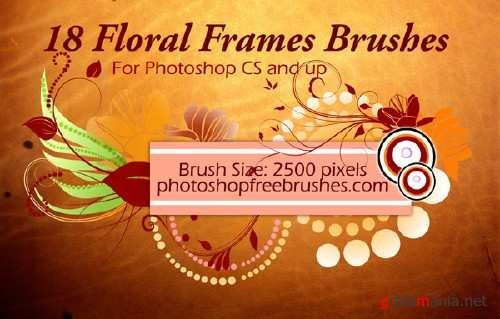 Floral Frame Photoshop Brushes