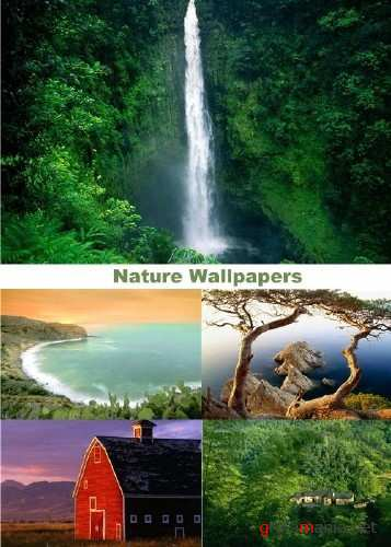 Nature Wallpapers (part 85)
