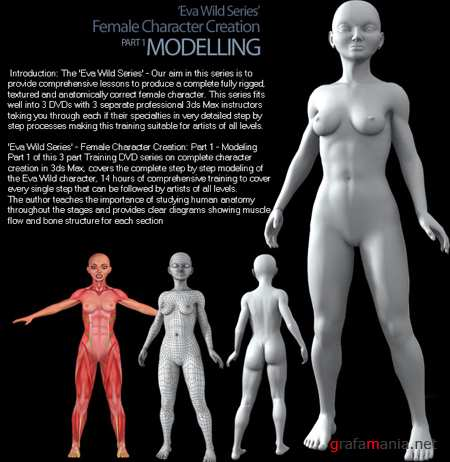 3DTotal 3DS MAX Training DVD