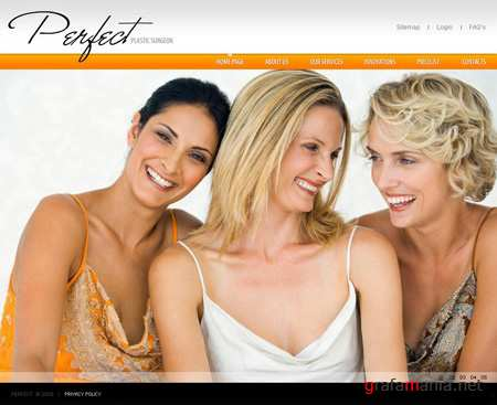 Perfect Plastic Surgeon - Flash Website Template