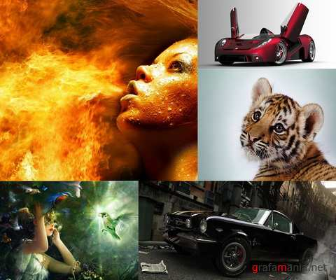 Fresh HQ Widescreen Wallpapers Pack #1