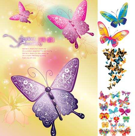 Butterfly Vector Mix