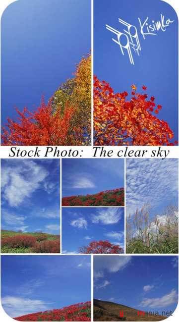 Stock Photo:  The clear sky