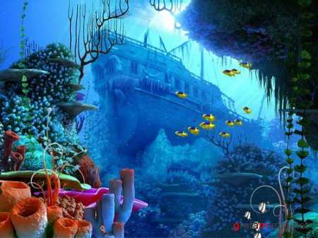 Portable Coral Reef 3D Screensaver 1.0 Build 3