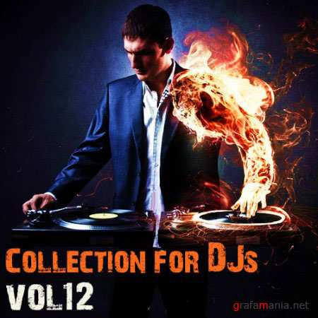Collection for Dj's vol.12 (2010)