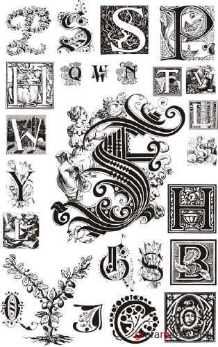 Ornamental Vector Letters