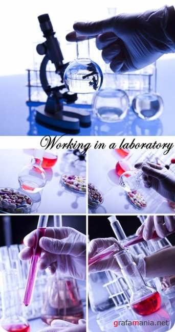 Stock Photo: Working in a laboratory