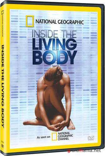 Внутри живого тела / National Geographic: Inside the Living Body (2007) HDTVRip