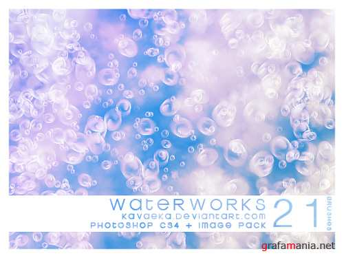 Waterworks Brushes