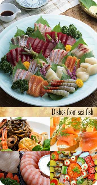 Stock Photo: Dishes from sea fish