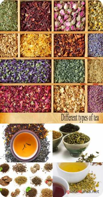 Stock Photo: Different types of tea