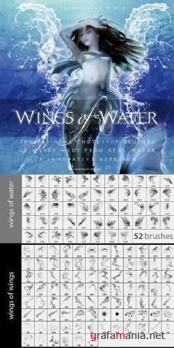 Wings of Water Brushes