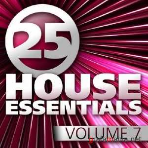 12 House Essentials: Vol 7 (2010) MP3