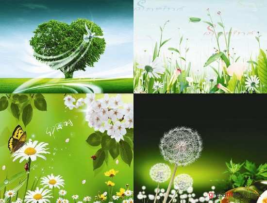 Four Natural Background PSD