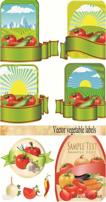 Stock Photo: Vector vegetable labels