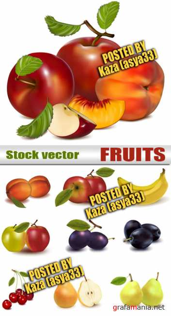 Fruit vector 2