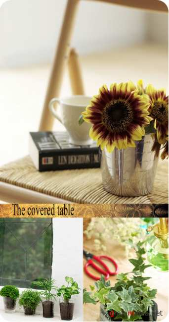 Stock Photo: The covered table