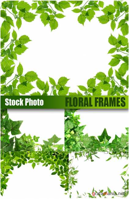 Stock Photo - Floral Frames