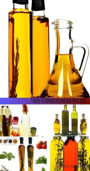 Stock Photo: Variety of infused oils and and olives plant