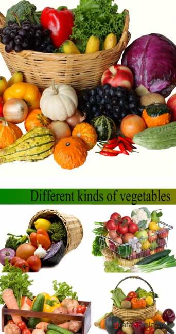 Stock Photo: Different kinds of vegetables